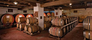 Red Wines in Oak Barrels